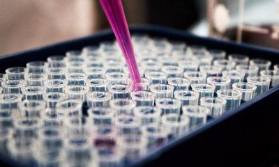 Cosmetic-Testing-Laboratory